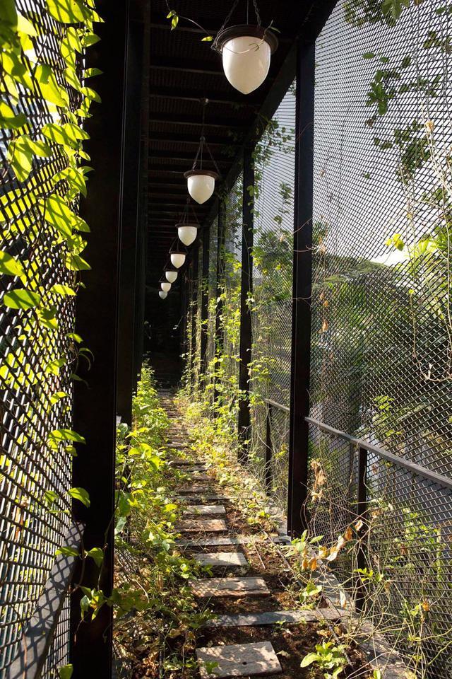 Chiêm ngưỡng biệt thự xanh đáng kinh ngạc ở Singapore - Ảnh 13.