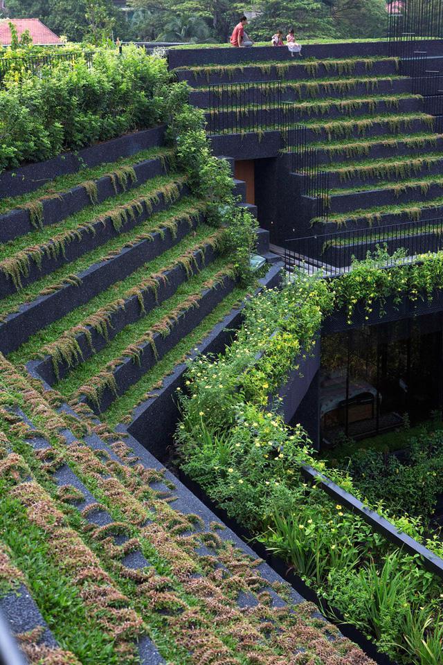 Chiêm ngưỡng biệt thự xanh đáng kinh ngạc ở Singapore - Ảnh 4.