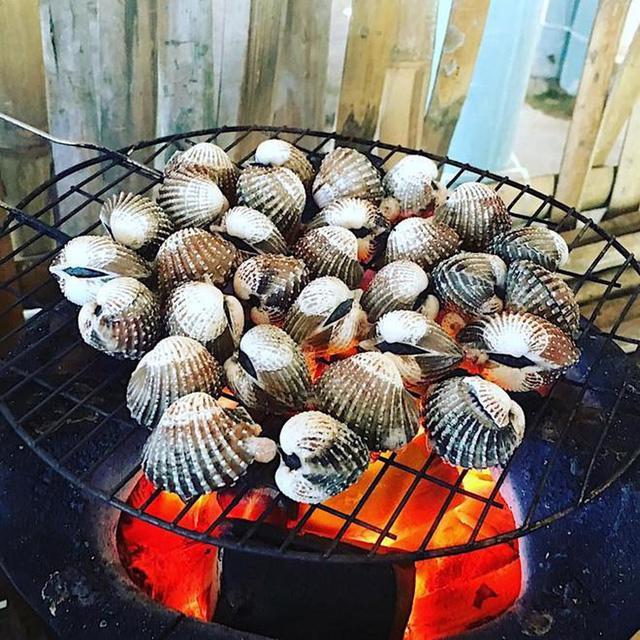 Top 10 hải sản ngon nhất Việt Nam được vào sách kỷ lục là những gì? - Ảnh 3.