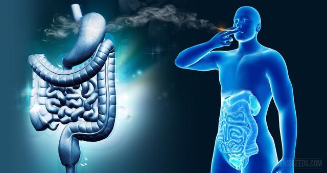 Nguy cơ viêm ruột mãn tính vì thuốc lá điện tử - Ảnh 1.