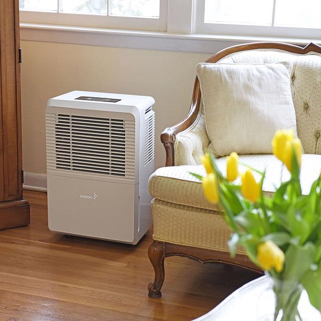 Những lưu ý khi mua máy hút ẩm cho gia đình - Ảnh 1.