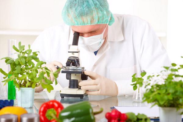 Nỗi lo thực phẩm biến đổi gen - Ảnh 2
