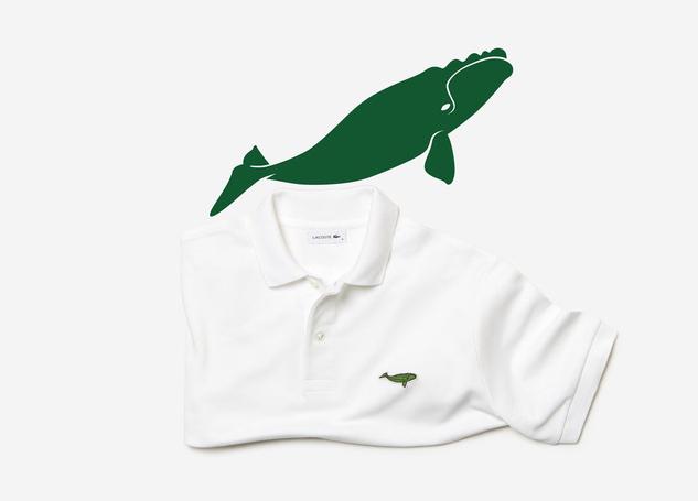 Lascote và những chiếc áo không cá sấu - Ảnh 3.