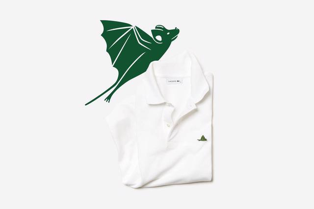 Lascote và những chiếc áo không cá sấu - Ảnh 5.