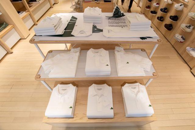 Lascote và những chiếc áo không cá sấu - Ảnh 9.
