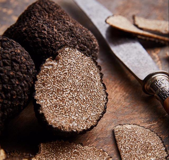 Truffle – loại nấm đắt như kim cương - Ảnh 2.