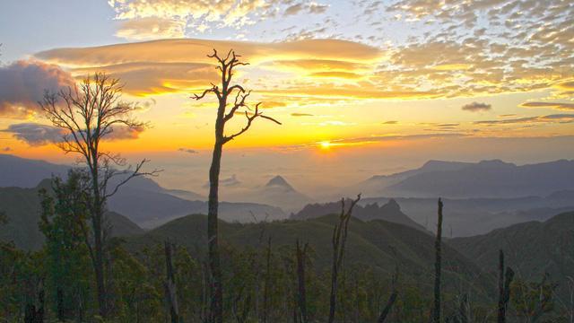 Bạch Mộc Lương Tử: hành trình săn mây và hái sao - Ảnh 8.