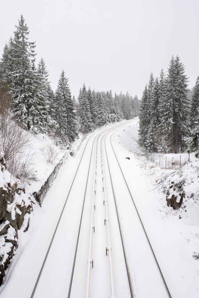 Oslo - không chỉ có mùa đông và cá trích - Ảnh 6.