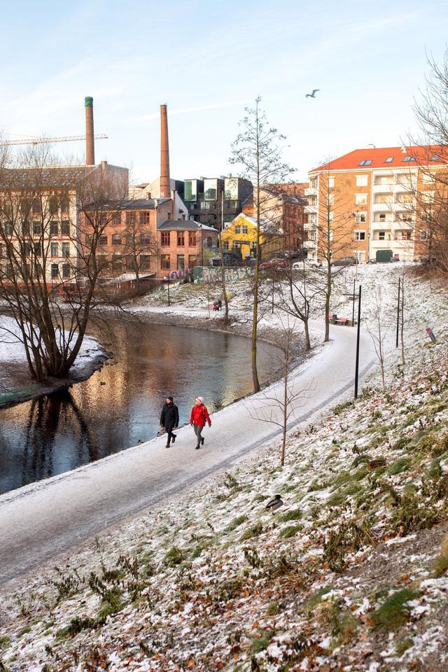 Oslo - không chỉ có mùa đông và cá trích - Ảnh 7.