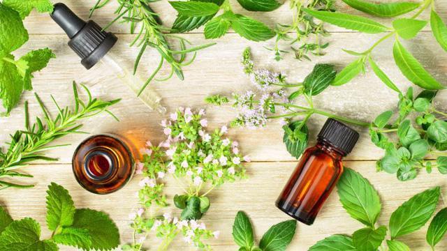 Những phương thuốc tự nhiên tuyệt vời để chữa bệnh - Ảnh 3.