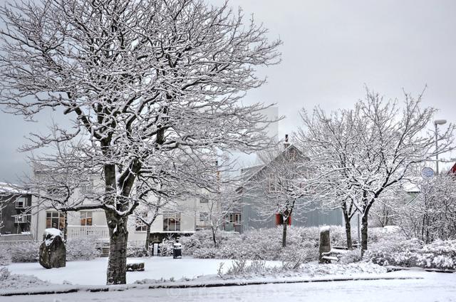 Giáng sinh như trong phim tại Reykjavik - Ảnh 2.