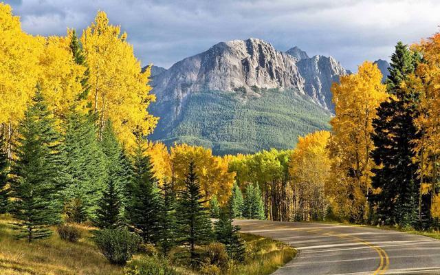 Ngắm mùa thu kỳ diệu trên đỉnh Rocky Mountain - Ảnh 12.