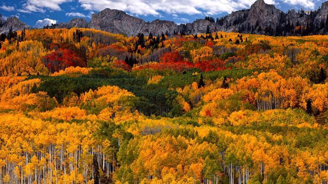 Ngắm mùa thu kỳ diệu trên đỉnh Rocky Mountain - Ảnh 13.