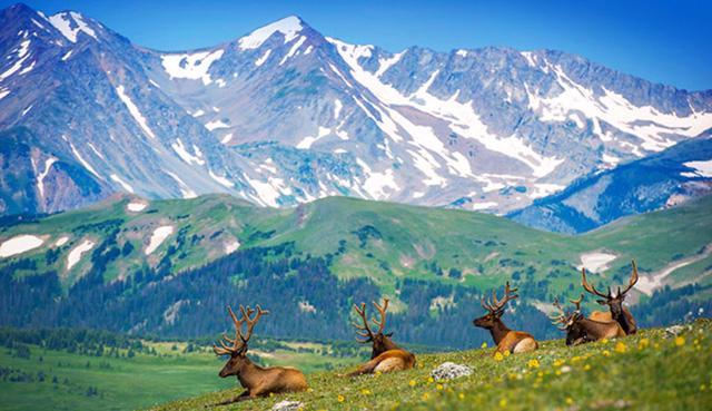 Ngắm mùa thu kỳ diệu trên đỉnh Rocky Mountain - Ảnh 1.