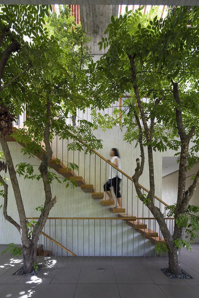 Giải thưởng kiến trúc quốc tế vinh danh 2 công trình của Việt Nam - Ảnh 8.