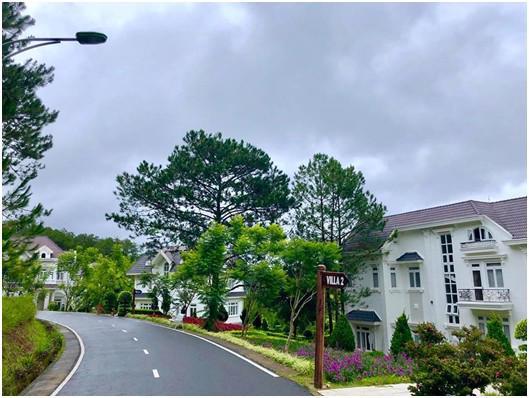 SAM Tuyền Lâm Resort: thiên đường giữa ngàn hoa - Ảnh 2.