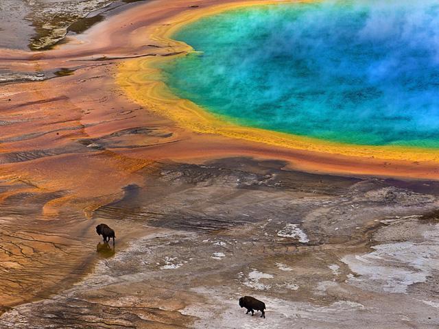 Grand Prismatic Springs: những gam màu tuyệt đẹp trong làn khói - Ảnh 8.