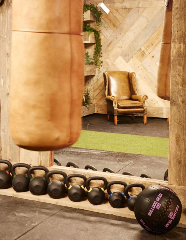 Bạn có muốn tập trong một phòng gym xanh? - Ảnh 6.