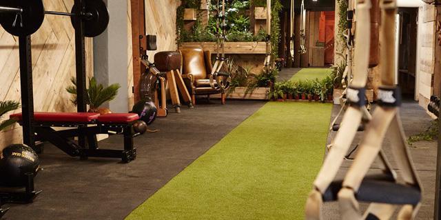 Bạn có muốn tập trong một phòng gym xanh? - Ảnh 2.