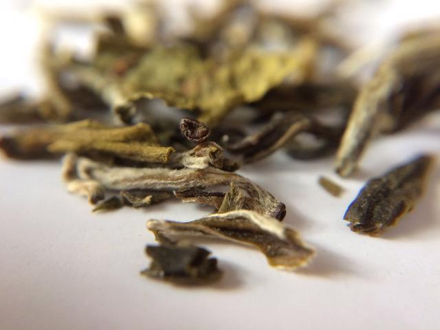 Shan Tuyết – trà 5 cực của Việt Nam - Ảnh 3.