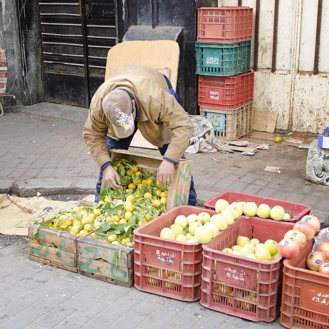 Loạn... trái cây nhập khẩu - Ảnh 2.