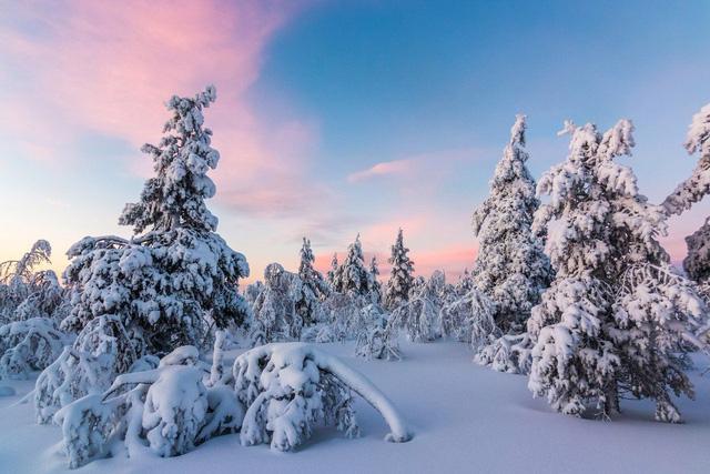 Lapland: nơi lý tưởng nhất để đón Giáng sinh tuyết trắng - Ảnh 2.