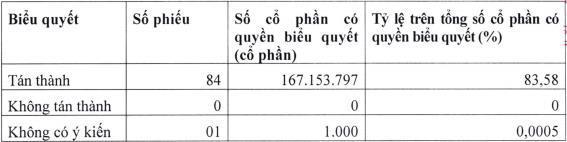 Cổ đông VPI thông qua kế hoạch phát hành 690 tỷ đồng trái phiếu chuyển đổi - Ảnh 1.