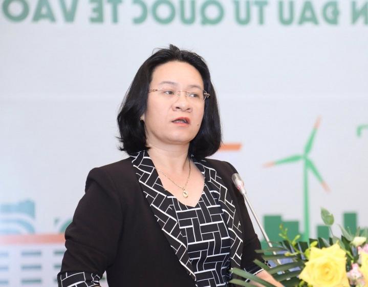 """""""Lái"""" nguồn vốn đầu tư nước ngoài vào năng lượng tái tạo - Ảnh 2."""