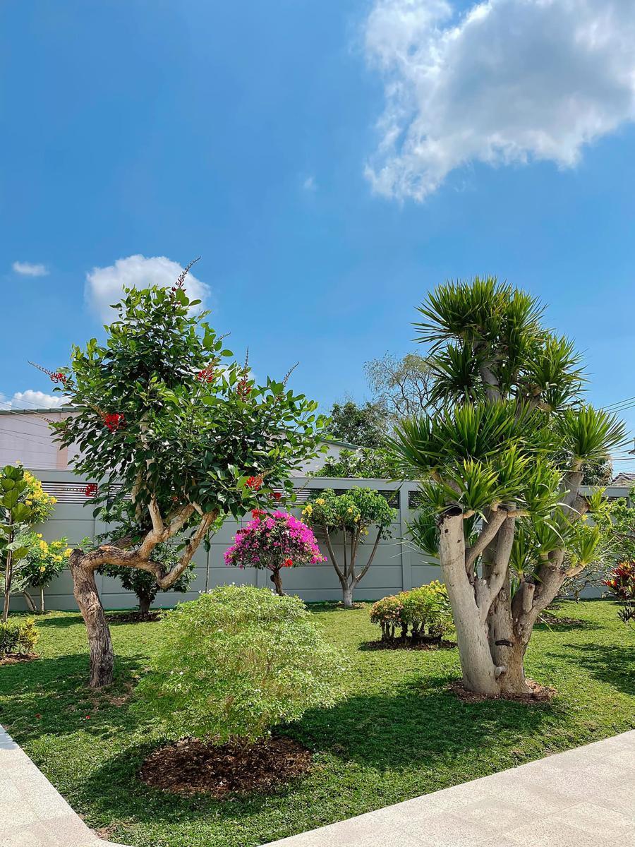 """Khu vườn nhiệt đới tạo nên một """"không gian đáng sống"""" - Ảnh 5"""