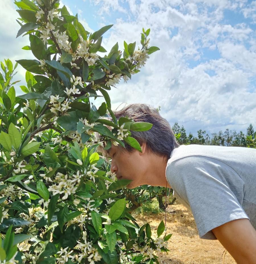 Founder Nguyễn Quang Huy, chủ nhân của những khu vườn chữa lành bằng liệu pháp mùi hương - Ảnh 1