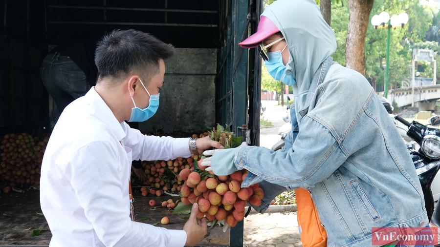 Cùng lúc, một điểm bán vải Bắc Giang khác cũng được triển khai trước cổng Công viên Thống Nhất (Hà Nội).