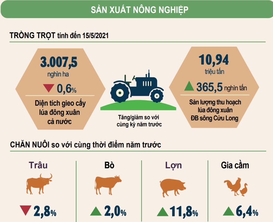 Sản lượng thủy sản tháng 5 ước tính đạt hơn 782 nghìn tấn - Ảnh 2