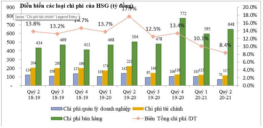 HSG: Tăng trưởng mạnh sau hành trình tái cơ cấu - Ảnh 1