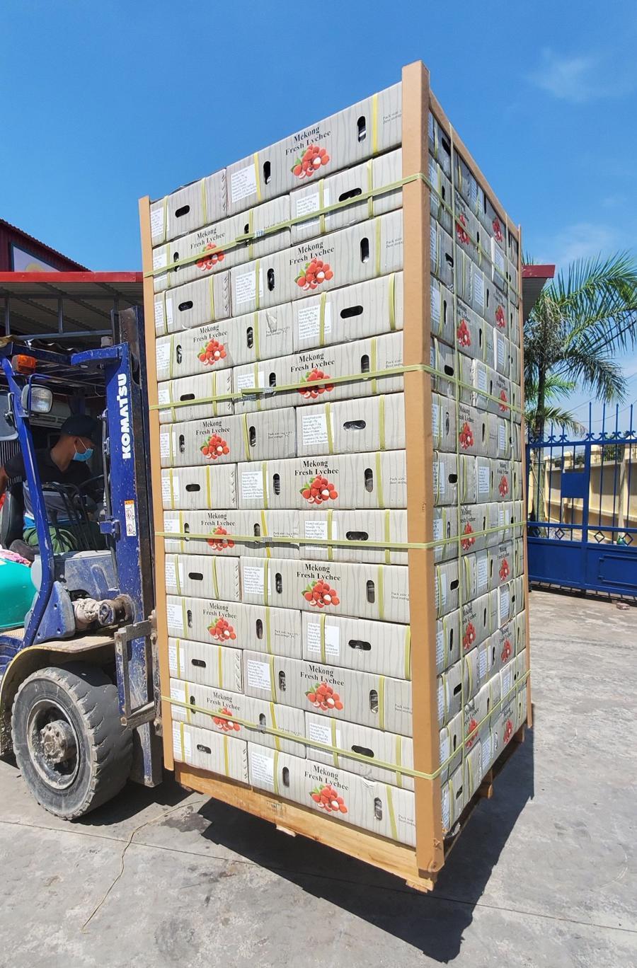 Xuất khẩu nông sản: Trái ngọt dành cho người có tâm - Ảnh 1