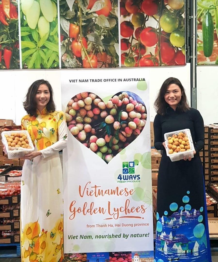 Khách hàng bắt đầu trông chờ vải Việt Nam xuất hiện tại thị trường Australia. Ảnh: TTXVN.