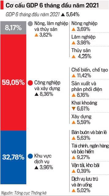 GDP 6 tháng tăng 5,64%, vẫn còn những băn khoăn - Ảnh 1