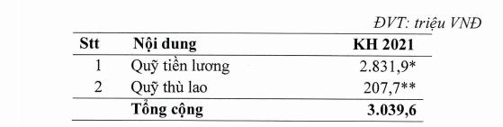 Vietnam Airlines phát hành 800 triệu cổ phiếu lấy tiền trả nợ - Ảnh 2