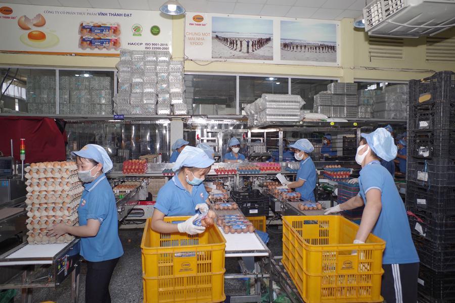 Công ty CP Thực phẩm Vĩnh Thành Đạtchia bộ phận sản xuất làm 2 khu vực riêng biệt nhằm giảm thiểu rủi ro.