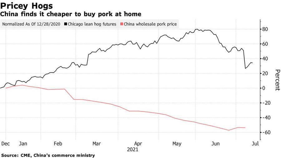 Diễn biến mức tăng giảm so với thời điểm ngày 28/12/2020 của giá lợn hơi giao sau tại thị trường Chicago (đường màu đen) và giá thịt lợn bán buôn ở Trung Quốc (đường màu đỏ). Đơn vị: % - Nguồn: Bloomberg.