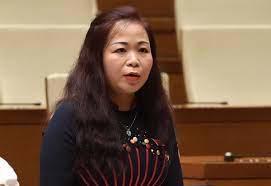Đại biểu Vũ Thị Lưu Mai, Đoàn thành phố Hà Nội