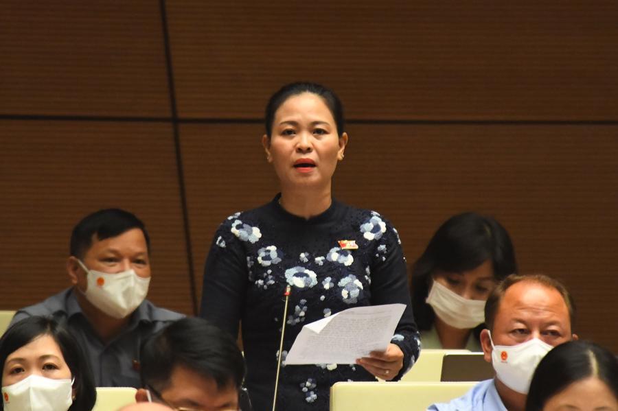 Đại biểu Nguyễn Thị Thu Dung thảo luận tại phiên họp - Ảnh: Quochoi.vn