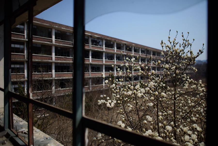 """Theo cư dân của nhiều thành phố như Daejeon, những ngôi trường bỏ hoang gây ảnh hưởng lớn tới mỹ quan đô thị. Kim Hwa-yeon, 29 tuổi, từng sống tại Daejeon, cho rằng những trường học bỏ hoang này """"trông vô cùng đáng sợ"""" và là """"hiểm họa về môi trường""""."""