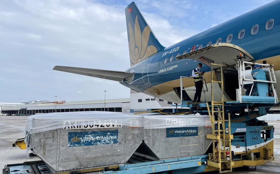 Vietnam Airlines đã thực hiện chuyên chở hàng hóa, trang thiết bị y tế cấp thiết đến các tỉnh thành trên cả nước cũng như nhiều quốc gia láng giềng.