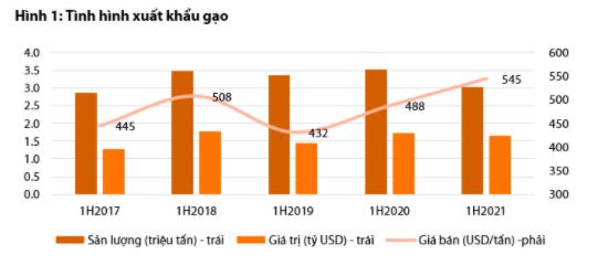 Dự báo giá gạo Việt Nam sẽ giảm mạnh do cạnh tranh với Ấn Độ - Ảnh 1