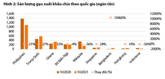 Dự báo giá gạo Việt Nam sẽ giảm mạnh do cạnh tranh với Ấn Độ - Ảnh 2