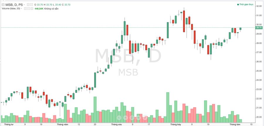 MSB dự kiến chia cổ tức bằng cổ phiếu tỷ lệ 30% - Ảnh 1