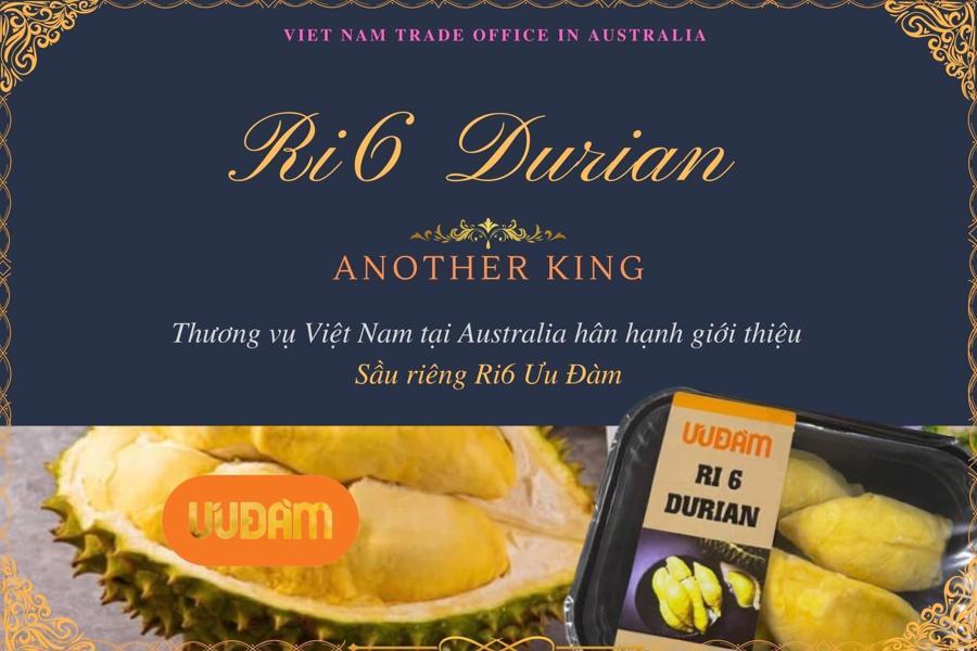 Sầu riêng Ri6 đã có thương hiệu tại Australia
