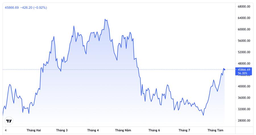 Diễn biến giá Bitcoin từ đầu năm đến nay. Đơn vị: USD/Bitcoin - Nguồn: Trading View.