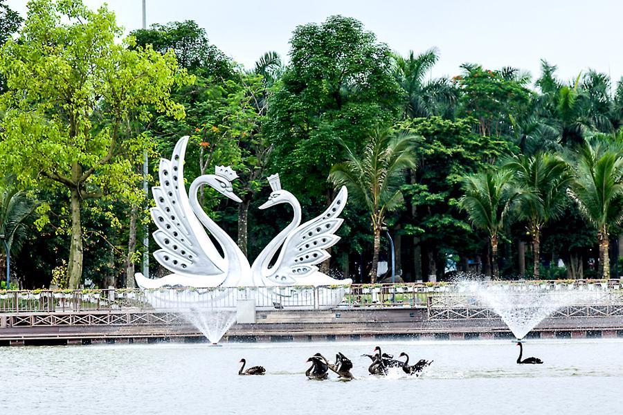 Khu đô thị cách hồ Hoàn Kiếm 14 km có thiên nga, vịt trời đi lại tự do trên đường - Ảnh 1