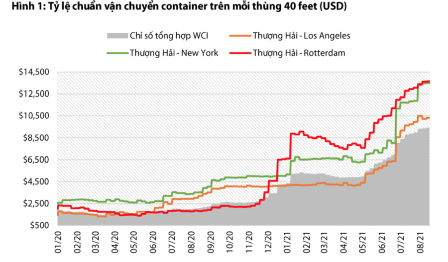 Giãn cách xã hội lại đe dọa giá cước container nội địa tăng cao - Ảnh 1